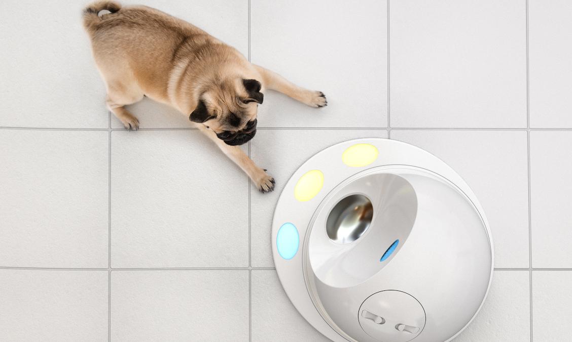 CES 2016: novità per cani e gatti high tech!