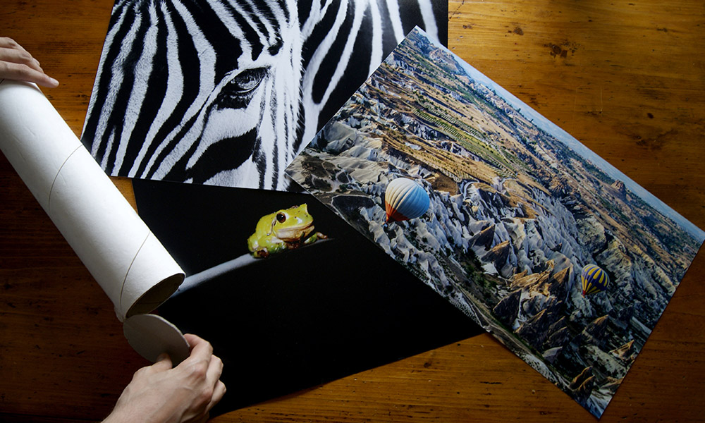 Quadri moderni stampe e poster online per l 39 arredamento for Poster arredo casa