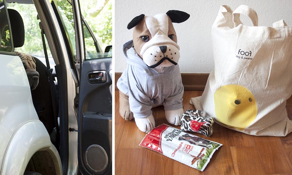 Vacanze con il cane: la borsa di Milla