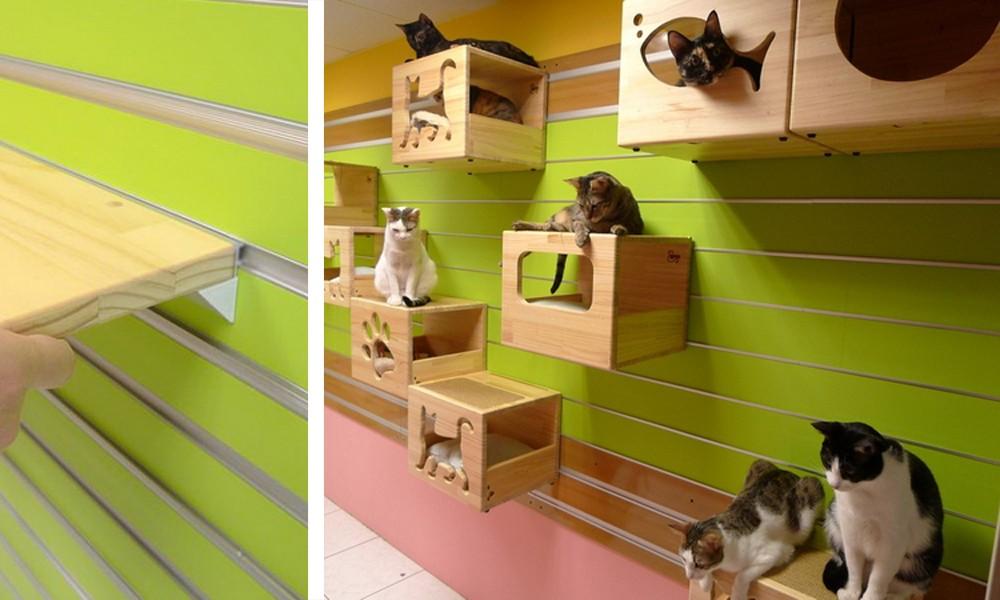 Il gatto design che i nostri a mici adoreranno for Parete attrezzata gatti