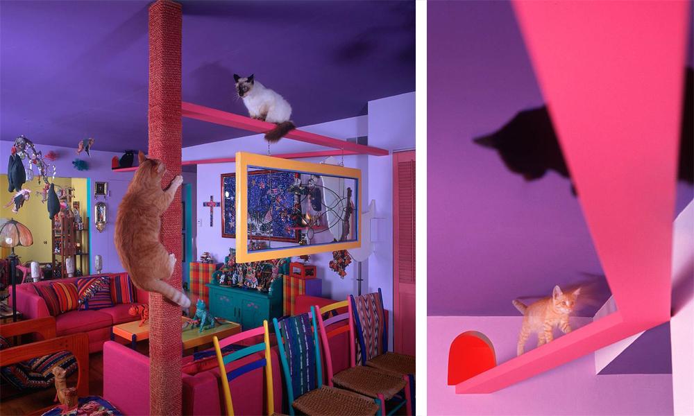 cat house san diego