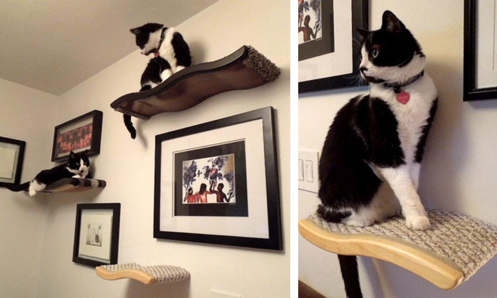 cat shelves kascade