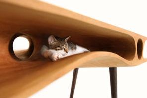 Design per gatti e cani di piccola taglia: soluzioni e consigli
