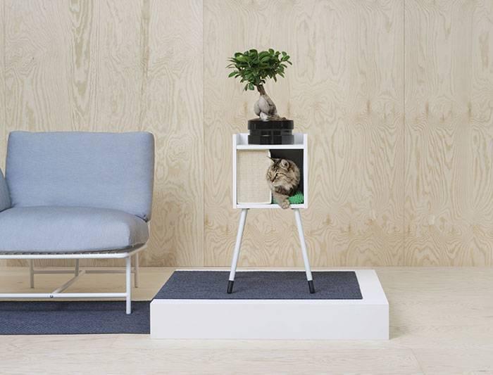 pet design _ complementi